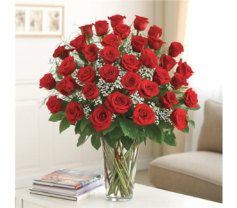 3 Dozen Premium Roses in Pittsburgh PA, Eiseltown Flowers & Gifts