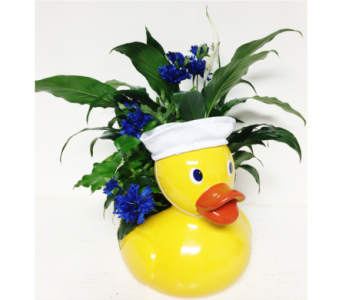 Duck Planter - Boy in Wyoming MI, Wyoming Stuyvesant Floral
