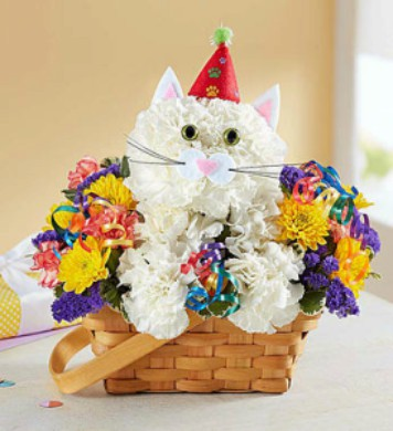 Purrfect Party Cat by 1800flowers in Las Vegas NV, A French Bouquet