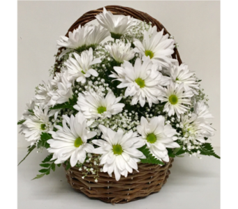 Daisy Day Basket Arrangement-9 Inch Handled Basket in Wyoming MI, Wyoming Stuyvesant Floral