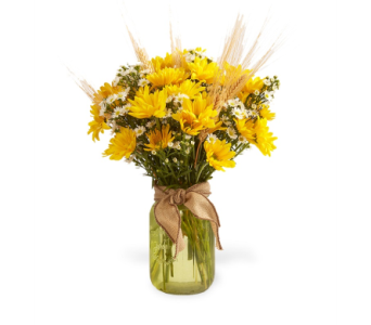 Fall Daisy Vase in Big Rapids, Cadillac, Reed City and Canadian Lakes MI, Patterson's Flowers, Inc.