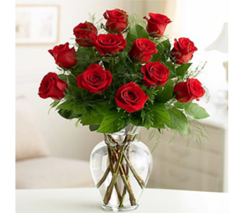 12 Premium Long Stem Roses in Indianapolis IN, George Thomas Florist
