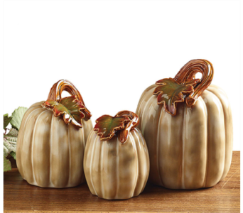 Ceramic Pumpkins in Tampa FL, Buds, Blooms & Beyond