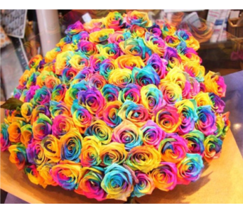 5 Dozen Rainbow Roses in Spruce Grove AB, Flower Fantasy & Gifts