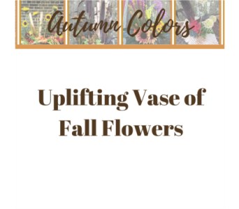 Uplifting Vase of Fall Flowers in Eau Claire WI, Brent Douglas