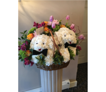 2 Dogs in Staten Island NY, Kitty's and Family Florist Inc.