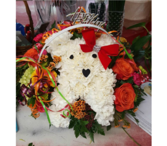 Puppy in Staten Island NY, Kitty's and Family Florist Inc.