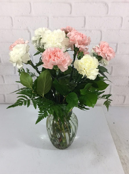 Lovely Carnations in Omaha NE, Piccolo's Florist and Gifts