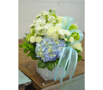 Sea Breeze in Nashville TN, Emma's Flowers & Gifts, Inc.