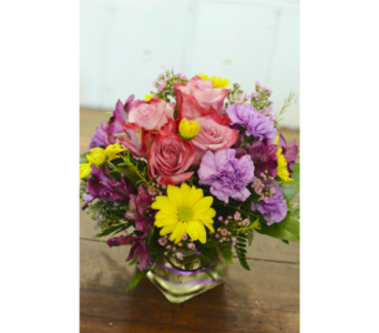 Star Fire in Nashville TN, Emma's Flowers & Gifts, Inc.