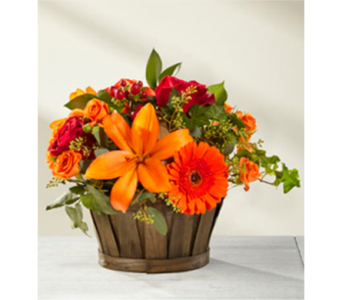 FTD Harvest Memories in Owensboro KY, Welborn's Floral Company