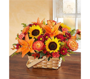 Fields of Europe for Fall Basket in Huntington WV, Archer's Flowers and Gallery