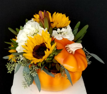 Pumpkin Spice and Everything Nice in Nashville TN, The Bellevue Florist