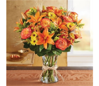 Fields For Fall in Voorhees NJ, Green Lea Florist