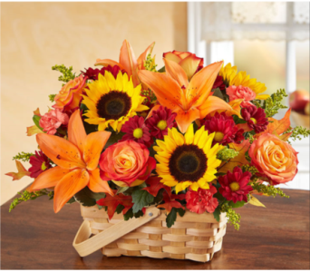 Fields of Europe� for Fall Basket 59.99 in Manchester MD, Main St Florist Of Manchester, LLC