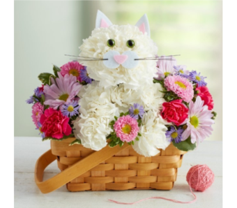 Fabulous Feline� in Manchester MD, Main St Florist Of Manchester, LLC