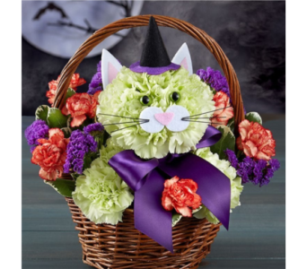 Purrfect Potions Fabulous Feline� in Manchester MD, Main St Florist Of Manchester, LLC