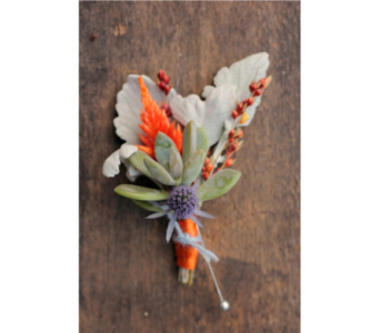 Succulent Orange Boutonniere in Neenah WI, Sterling Gardens