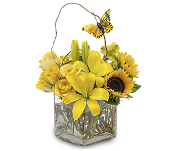 Jonesboro's Brightest in Jonesboro AR, Bennett's Flowers