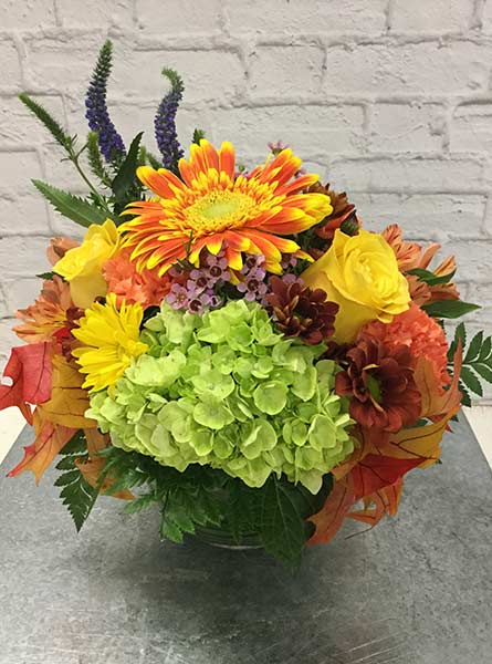 Fall Into Happiness in Arlington Heights IL, Sylvia's - Amlings Flowers