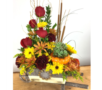 Fall Flourish in Baltimore MD, Raimondi's Flowers & Fruit Baskets