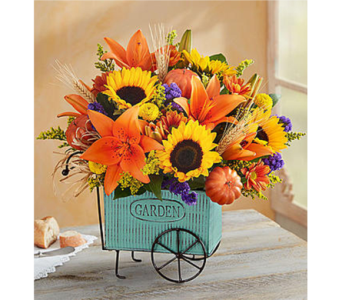 Harvest Garden Cart in Watertown CT, Agnew Florist
