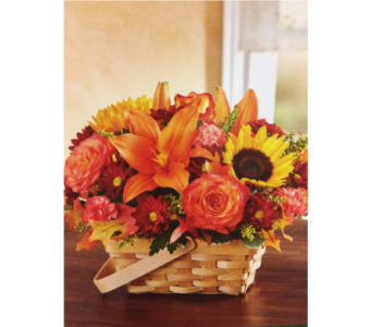 Fields of Europe Basket in Kissimmee FL, Golden Carriage Florist