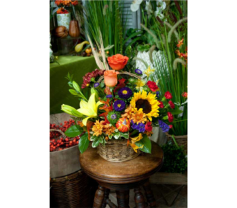 Harvest Basket in Williamsburg VA, Morrison's Flowers & Gifts