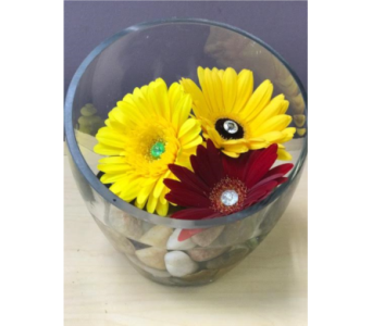 Gerb Dish in Spruce Grove AB, Flower Fantasy & Gifts