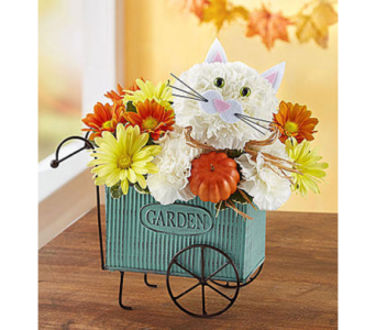 Fabulous Fall Feline  in Fairfax VA, Exotica Florist, Inc.