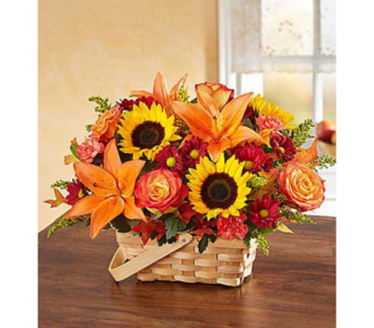 Fields of Europe Fall  in Fairfax VA, Exotica Florist, Inc.