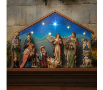 Bethlehem and Nativity in Tampa FL, Buds, Blooms & Beyond