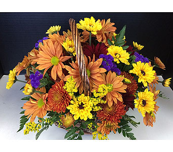 Fall Daisy Delight in Moon Township PA, Chris Puhlman Flowers & Gifts Inc.