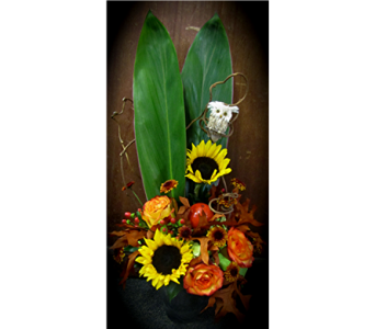 Autumn Owl in Alamogordo NM, Alamogordo Flower Company