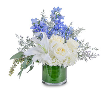 Calm and Cool in Escondido CA, Rosemary-Duff Florist