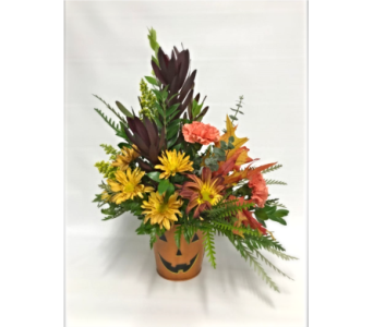 Pumpkin Pal Bouquet in Fort Pierce FL, Giordano's Floral Creations