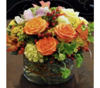 Autumn Blooms in Baltimore MD, Raimondi's Flowers & Fruit Baskets