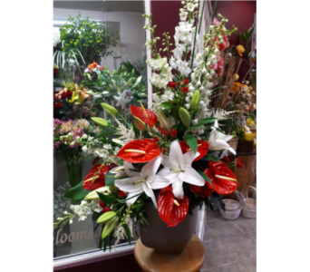 Custom in Ottawa ON, Exquisite Blooms