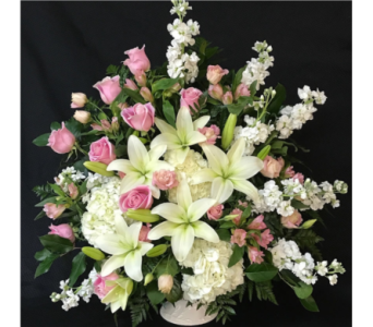 Soft Whisper Basket  in Needham MA, Needham Florist