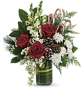 Teleflora's Festive Pines Bouquet in West Chester OH, Petals & Things Florist
