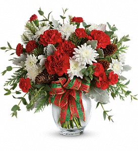 Teleflora's Holiday Shine Bouquet in Washington, D.C. DC, Caruso Florist