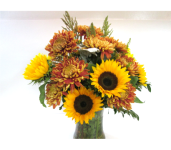 Sunflower and Mum Vase in Worcester MA, Holmes Shusas Florists, Inc