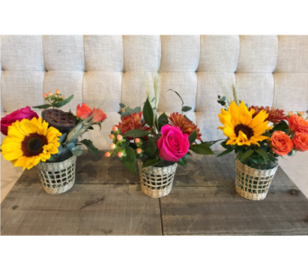 Fall Trio in Charleston SC, Tiger Lily Florist Inc.