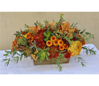 Thanksgiving Centerpiece in Deerfield IL, Swansons Blossom Shop