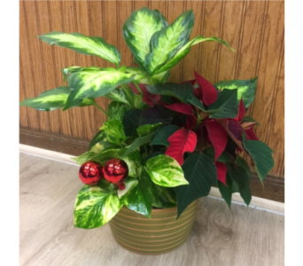 HolidayPlanter in Chicago IL, La Salle Flowers