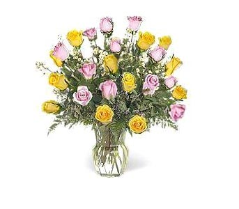 Stein Two Dozen Pink & Yellow Roses in Burlington NJ, Stein Your Florist