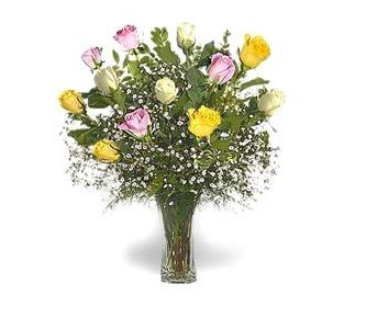 Stein Dozen Pink, White, & Yellow Roses in Burlington NJ, Stein Your Florist