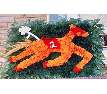 Stein Brown Race Horse in Burlington NJ, Stein Your Florist