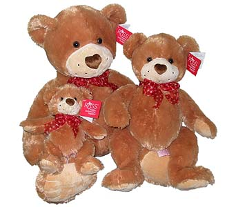 PLUSH103 Russ Bear Family in Oklahoma City OK, Array of Flowers & Gifts