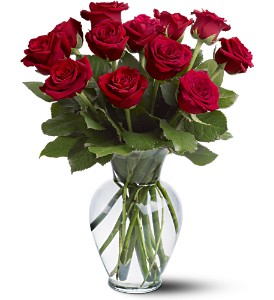 12 Red Roses in Waukegan IL, Larsen Florist